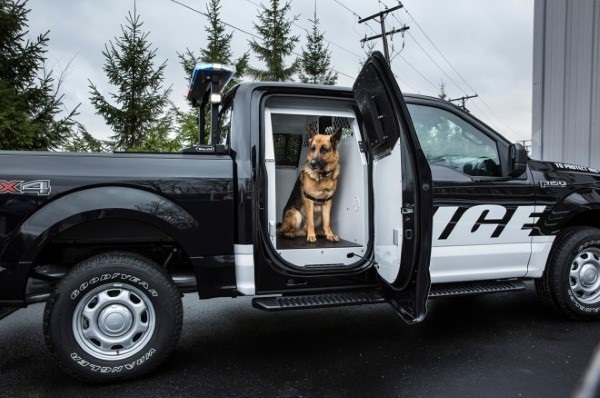 2016-Ford-F-150-Special-Service-Vehicle-package-K9-side-view-660x438