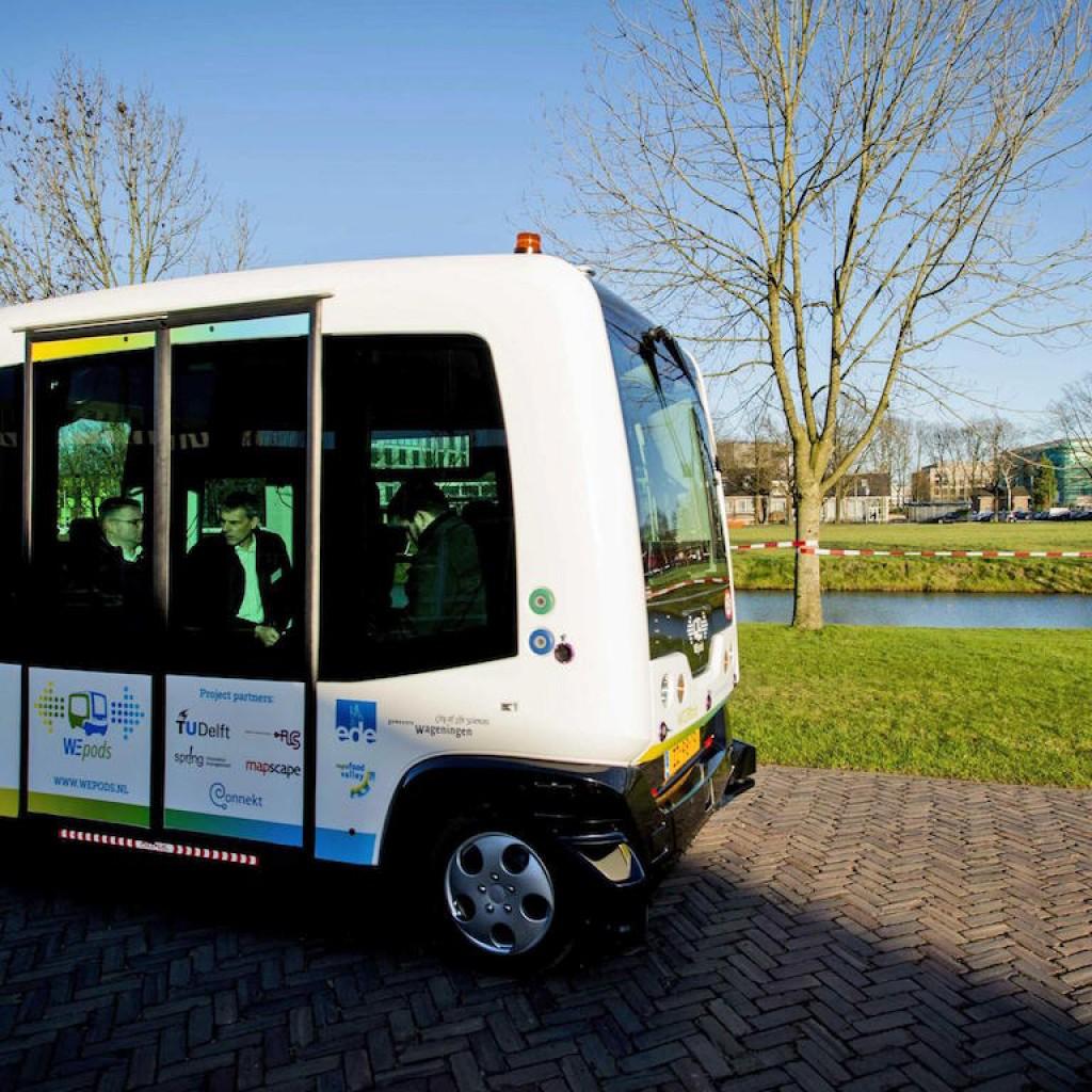 driverless bus1