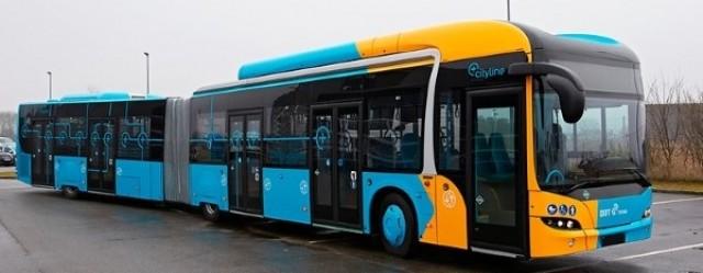busbusbusbus